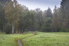 Narrow path on green field Stock Photos