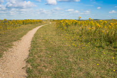 Narrow path in a nature reserve Stock Images