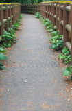 Narrow path in park Stock Photo