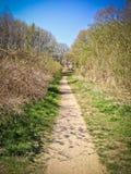 Narrow path through the park Royalty Free Stock Photo