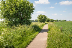 Narrow path in a rural landscape in springtime Royalty Free Stock Images