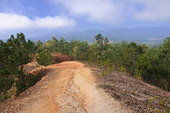 The narrow path on a steep slope in Pai Canyon Stock Image