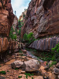 Narrow Red Sandstone Canyon Stock Images