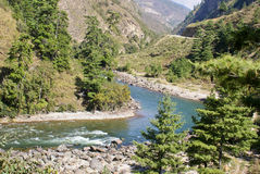 A narrow river flowing flanked by greenery on either side. Royalty Free Stock Image