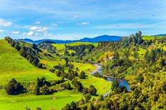 Narrow river between wooded hills. Picturesque Pacific coast. Narrow river between wooded hills. North Island, New Zealand. The concept of ecological, active and stock photos