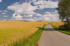 Road through farmlands. Narrow road through agricultural fields Royalty Free Stock Photography