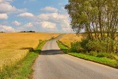 Road through farmlands Stock Image