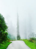 Narrow road in fog Royalty Free Stock Photography