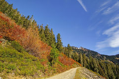 Narrow road leading to Twin Lakes Stock Photography