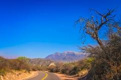 Narrow road to northern Argentina royalty free stock photos