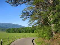 Narrow Road Winding through Cades Cove Stock Photo