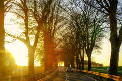 Narrow rural road in Germany Stock Images
