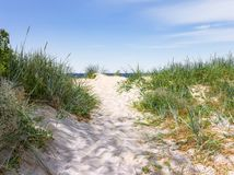 A narrow sandy pathway to the seashore. Curonian Spit. Russia Royalty Free Stock Images