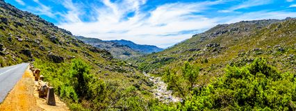 The narrow and scenic Bainskloof Pass through the Witte River or Witrivier Canyon between the towns Ceres and Wellington. In the Western Cape province in South royalty free stock photo