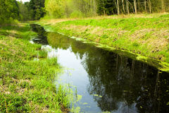 The narrow small river. The small narrow small river in a spring season stock photos