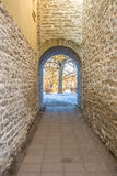 Narrow stone corridor. Small tunnel with archway leading to a tree Royalty Free Stock Image