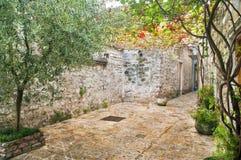 Narrow stone street with plants Royalty Free Stock Photos