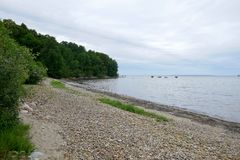 Narrow stony beach. In cloudy day with green trees foliage on the shore and calm water surface in Estonia Royalty Free Stock Photo