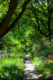 Narrow straight path through a green lush area Stock Photos