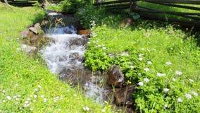 Narrow stream with rocks and grass. Narrow stream with rocks and green grass on both sides. lovely alpine scenery stock video footage