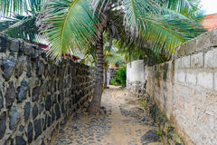 Narrow street of african village Royalty Free Stock Photos