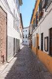 Narrow street of Cordoba Royalty Free Stock Photo