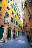 Narrow street decorated with colorful flower pots in Camogli royalty free stock photo