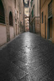 Narrow street in Florence Stock Image