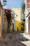Narrow street flowered Stock Image