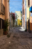 Narrow street flowered Royalty Free Stock Photos