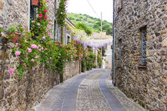 Narrow street of flowers Stock Photo
