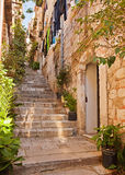 Narrow street with greenery in flower pots. On the floor and the walls in Dubrovnik, Croatia Stock Image