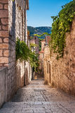 Narrow street with greenery in flower pots Stock Images