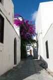 Narrow street in Lindos Royalty Free Stock Photo