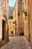 The narrow street of Mdina, the old capital of Malta. Royalty Free Stock Images