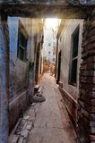 On the narrow street in the old city of Varanasi Stock Images