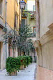 Narrow street in the old town in Italy Royalty Free Stock Photo