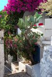 Narrow street of old town in Marmaris, Turkey. Day light. Ancien. T houses and stone stairs. Bougainvillea climbing on the wall. Vertical orientation Stock Photos