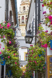 Narrow Street. With plants and old Buildings in City Stock Photos