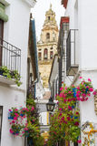 Narrow Street. With plants and old Buildings in City Royalty Free Stock Photo