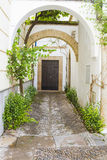 Narrow Street. With plants and old Buildings in City Royalty Free Stock Photography