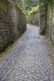 Narrow street in Sorrento, Italy. Narrow street with stone pavement in Sorrento, Italy. The lush vegetation is a reminder of the Mediterranean climate here Stock Photo