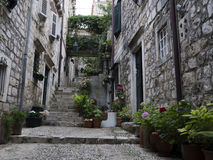 Narrow street with stone pavement Royalty Free Stock Image