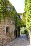 Narrow street, stone pavement full of ivy in Peratallada Royalty Free Stock Photo