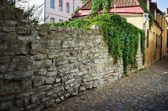 Narrow street in  Tallinn. Narrow street in the old town of Tallinn Royalty Free Stock Images