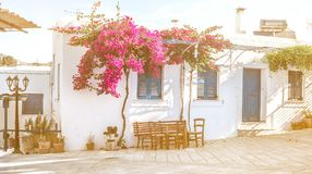 Narrow street with white houses, Greece. Beautiful narrow street with white houses in Mikonas island, Greece. Traditional narrow street with white facedes of Royalty Free Stock Photos