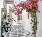Narrow street with white houses, Greece. Beautiful narrow street with white houses in Mikonas island, Greece. Traditional narrow street with white facedes of Royalty Free Stock Image