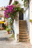 Narrow streets of the mountain town. The narrow streets of the town and staircase in old house and flowers Oleander in Italy, Sardinia Stock Image