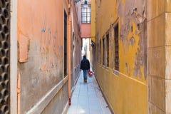Narrow Streets in Venice Stock Photography