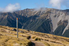 Narrow track accross grassy hills. In Nelson Lakes National Park, New Zealand Royalty Free Stock Images